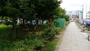 平鎮區公園-和平公園