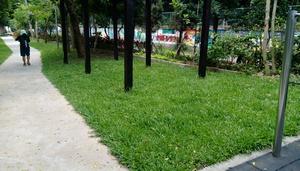 平鎮區公園-承德公園