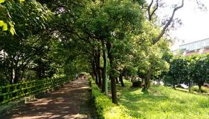 平鎮區公園-新天母公園