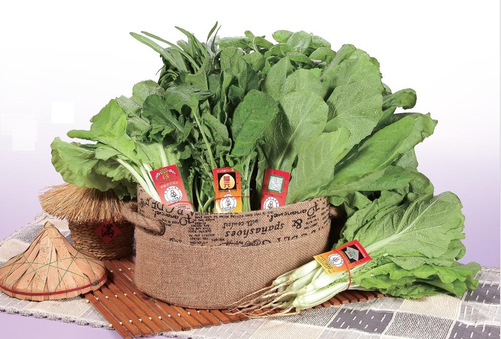 葉菜類蔬菜