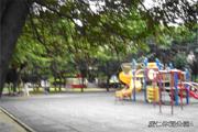 平鎮區公園-廣仁公園圖片(共三張)