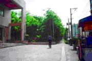 平鎮區公園-復旦公園圖片(共三張)
