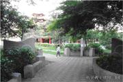 平鎮區公園-新榮公園圖片(共三張)