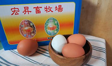 宏昇機能蛋
