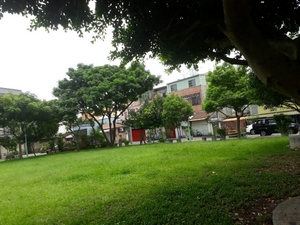 平鎮區公園-貿七公園
