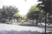 平鎮區公園-義興公園圖片(共兩張)