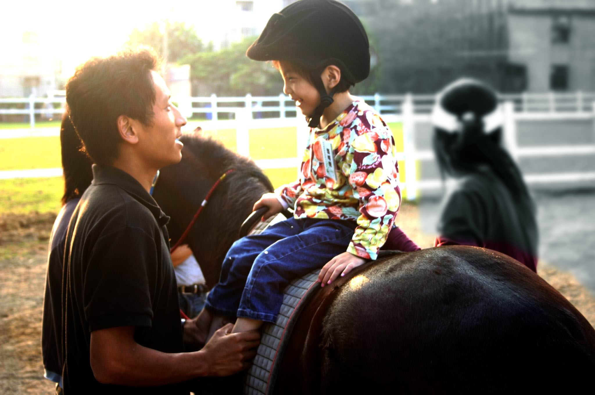 馬匹替物理治療開啟新可能