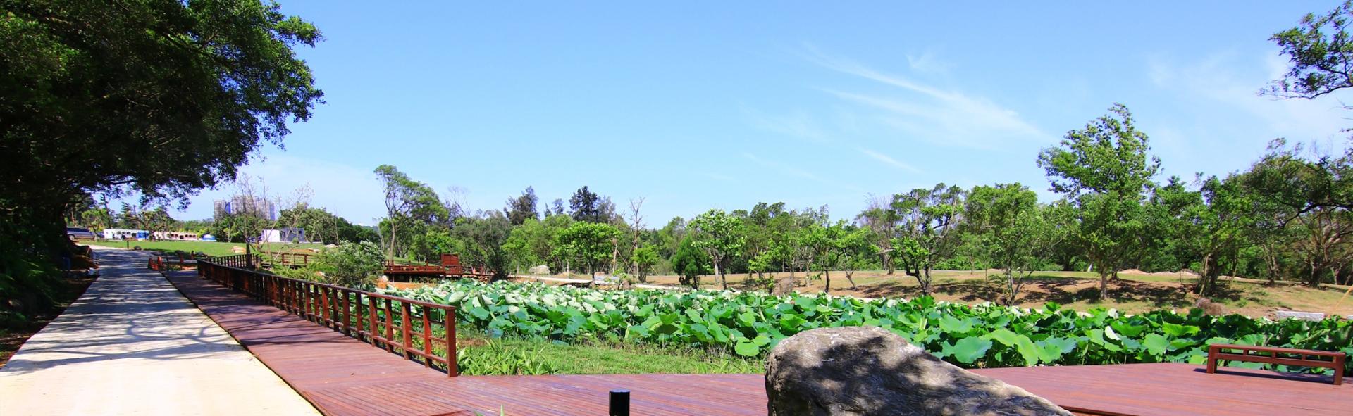 山豬湖生態池