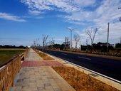 桃49-1線(中興路)道路拓寬工程-完工照片(1070330)