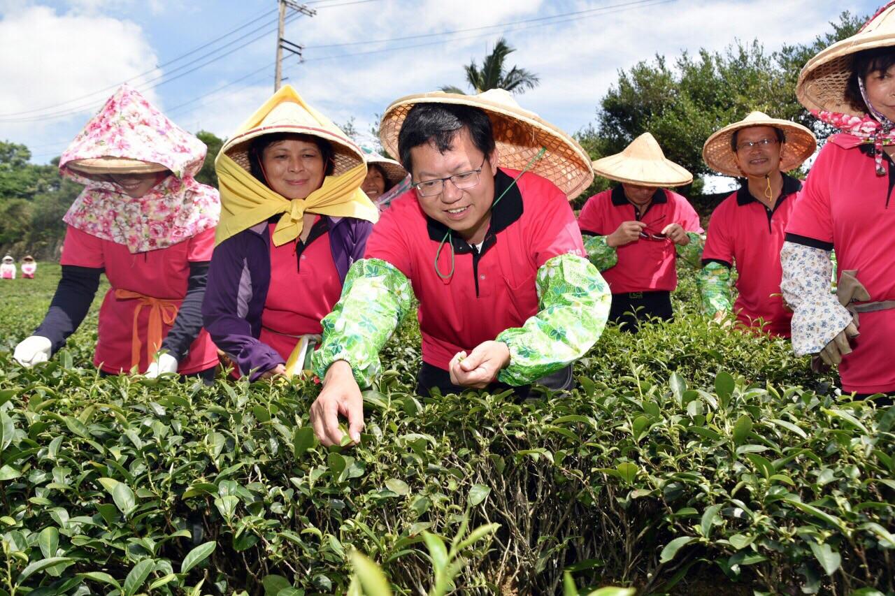 The 2015 Taoyuan tea cultural festival ...