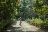 大湳森林公園【另開新視窗】
