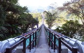 復興新溪口吊橋啟用 鄭市長:台北有101,復興有303,打造復興區新觀光亮點