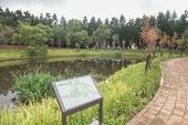 過嶺森林公園生態池【另開新視窗】