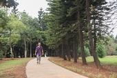 過嶺森林公園步道【另開新視窗】