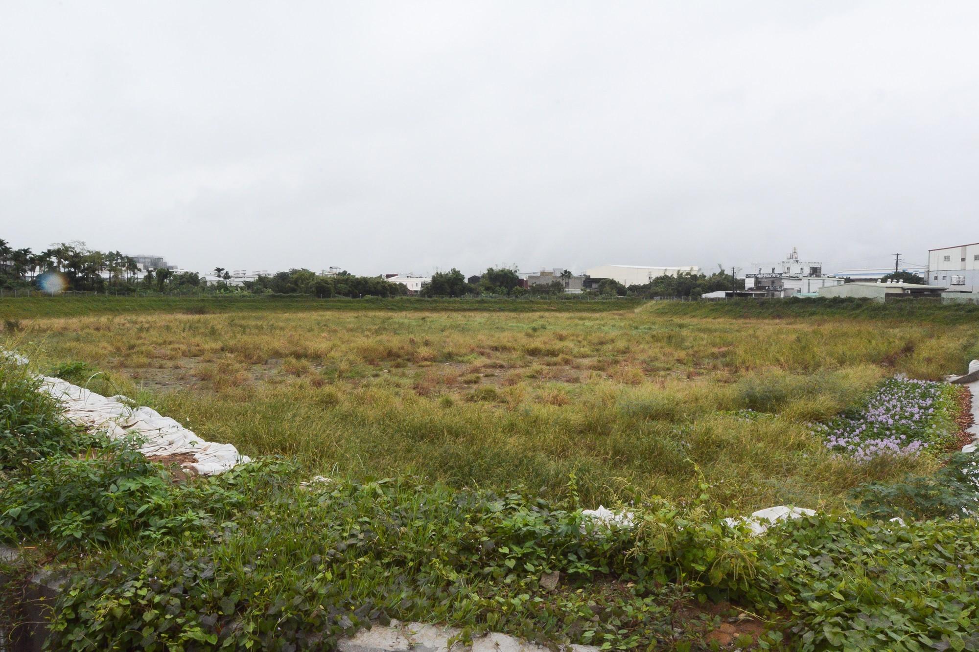 未來將成為乾式滯洪池,平時為大草原
