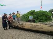 志工在「石滬人」附近導覽