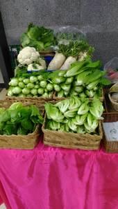 1070205~1070209-桃園區-桃園優質農特產品展售會【另開新視窗】