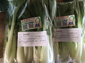 10701-八德區-春來碾花草_市集內消費滿額送有機蔬菜【另開新視窗】