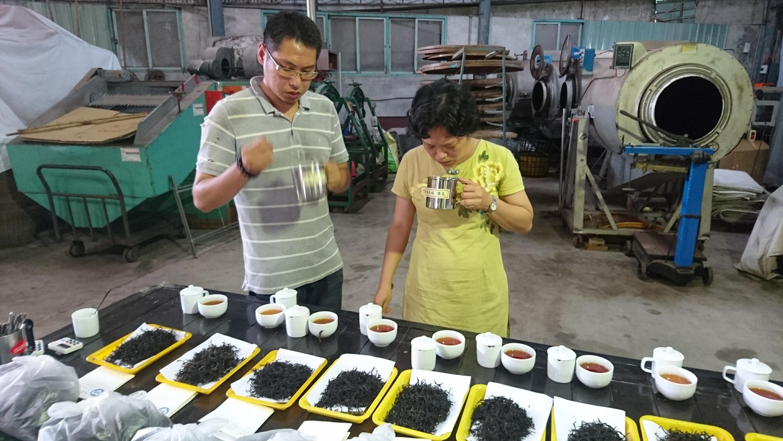 紅茶技術競賽活動