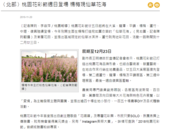 107年楊梅區11月新聞大事