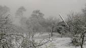 角板山行館園區雪景