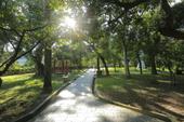 大溪-中正公園