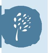 桃園SDGs網站