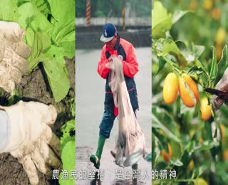 法務部農漁會選舉反賄宣導影片